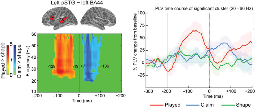 Brain Network Connectivity During Language Comprehension: Interacting Linguistic and Perceptual Subsystems