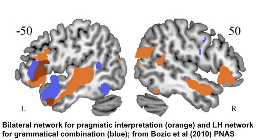 Bilateral network for pragmatic interpretation (orange) and LH network for grammatical combination (blue); from Bozic et al (2010) PNAS