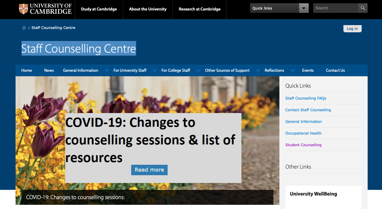 screenshoot of staff counselling centre page
