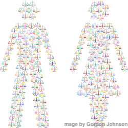 image of female and male made of scales